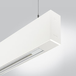 Rigo 50 | suspended electrified | Iluminación general | Arcluce