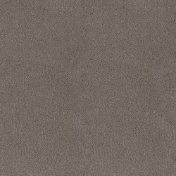 Asteranne Broadloom | Wall-to-wall carpets | Desso by Tarkett