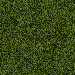 Marathon Broadloom | Wall-to-wall carpets | Desso by Tarkett