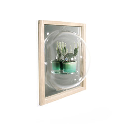 Showcase Mirror | Miroirs | Tuttobene