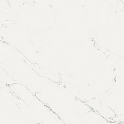 Marvel Stone ms carrara | Ceramic panels | Atlas Concorde