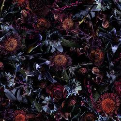 Fool's Paradise | Broadloom | Wall-to-wall carpets | moooi carpets
