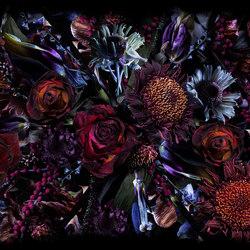 Fool's Paradise | rug | Rugs | moooi carpets