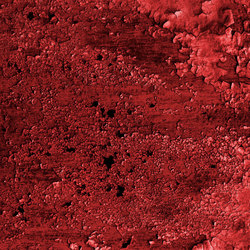 Oxidized | dark red | Wall-to-wall carpets | moooi carpets