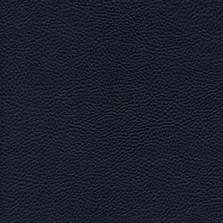 skai Parotega NF nightblue | Faux leather | Hornschuch