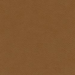 skai Parotega NF cashmere | Faux leather | Hornschuch