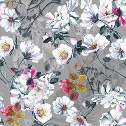 Pomander | Noir Broadloom | Wall-to-wall carpets | moooi carpets