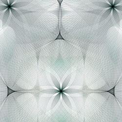 Spiroflower | grey | Auslegware | moooi carpets