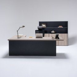 Cube | Executive desks | ERSA