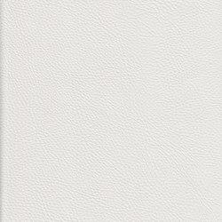 K324100 | Faux leather | Schauenburg