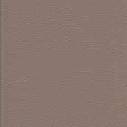 K324150 | Finta pelle | Schauenburg