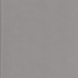 K324910 | Faux leather | Schauenburg