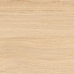 Provoak Rovere Puro | Ceramic panels | EMILGROUP