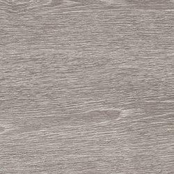 Tr3nd Wood Grey | Ceramic panels | EMILGROUP