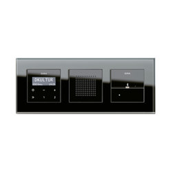 Esprit Glass | docking station | Radio systems | Gira