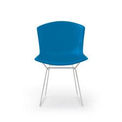 Bertoia Plastic Side Chair – Anniversary Edition | Chaises | Knoll International