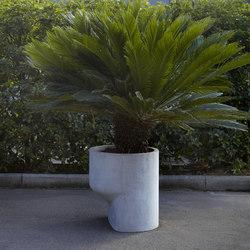 Igigante | Flowerpots / Planters | antoniolupi