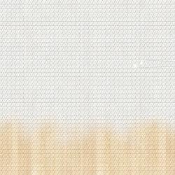 Arcade Asteroids | A medida | GLAMORA