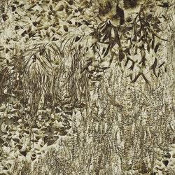 Bloom Aiola | A medida | GLAMORA