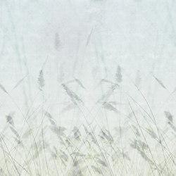 Bloom Blur | A medida | GLAMORA