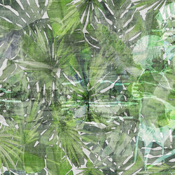 Fitzcarraldo | Wandbilder / Kunst | TECNOGRAFICA