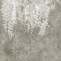 Hedera | Quadri / Murales | TECNOGRAFICA