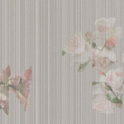 Modern Garden | Wandbilder / Kunst | TECNOGRAFICA