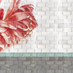 Macroflower Chalk | A medida | GLAMORA