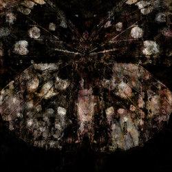 Metamorphosis Belladonna | Bespoke wall coverings | GLAMORA