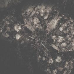 Metamorphosis Belladonna | Wandbeläge | GLAMORA