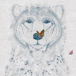 Ursidae | Quadri / Murales | TECNOGRAFICA