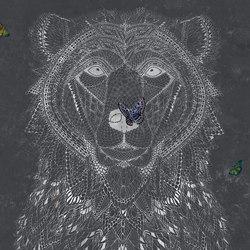 Ursidae | Wandbilder / Kunst | TECNOGRAFICA