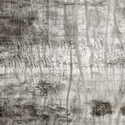 Woodland | Wall art / Murals | TECNOGRAFICA