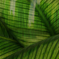 Paysage Leaf | Bespoke wall coverings | GLAMORA