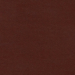Bull's Eye | Faux leather | Anzea Textiles