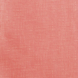 Catalina Cruise | Pink Shells | Outdoor upholstery fabrics | Anzea Textiles