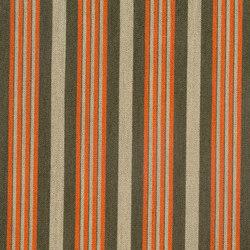 Catwalk | Salute | Upholstery fabrics | Anzea Textiles