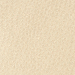 Fowl Play | Longspur | Faux leather | Anzea Textiles