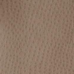 Fowl Play | Galah | Faux leather | Anzea Textiles