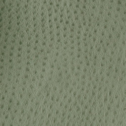 Fowl Play | Amazon | Similicuir | Anzea Textiles