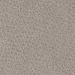 Fowl Play | Kingbird | Faux leather | Anzea Textiles