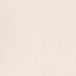 Fowl Play | Caique | Faux leather | Anzea Textiles