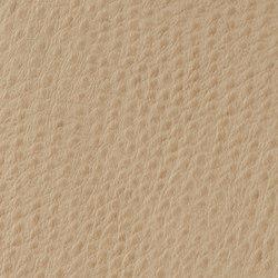 Fowl Play | Petrel | Cuero artificial | Anzea Textiles