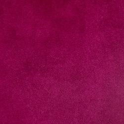 Lafayette | Bloom | Fabrics | Anzea Textiles