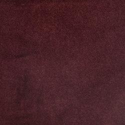 Lafayette | Cordovan | Fabrics | Anzea Textiles