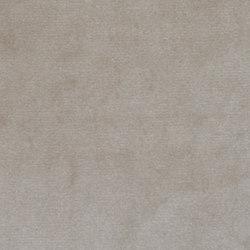 Lafayette | Flax | Upholstery fabrics | Anzea Textiles