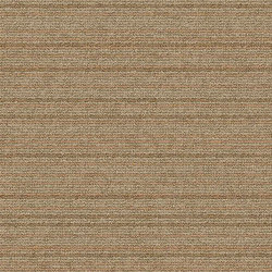 Shiver Me Timbers Birch | Carpet tiles | Interface USA