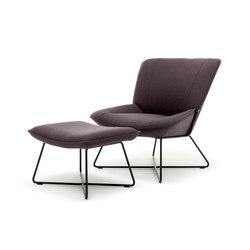 Rolf Benz 383 | Armchairs | Rolf Benz