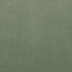 Renaissance | Neifile | Fabrics | Anzea Textiles