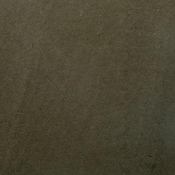 Renaissance | Panfilo | Fabrics | Anzea Textiles